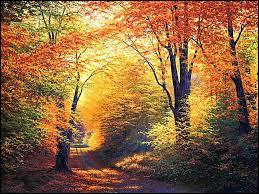 A l'automne, les feuilles nous offrent un magnifique tableau en nuances rouges et jaunes, mais à qui doit-on le recueil de poèmes  Les Feuilles d'automne  ?