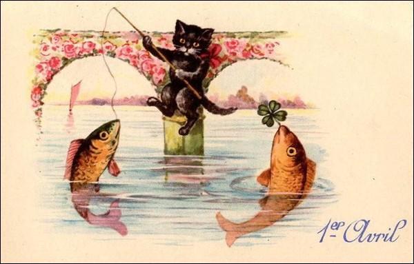 En Italie, un homme adoptait régulièrement des chats à la SPA. Il adorait les chats ! Il les faisait cuire au four avant de les déguster !