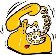 Quel est l'indicatif téléphonique du Bruneï ?