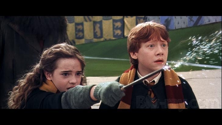 Finite Incantatem est un sortilège magique qui annule définitivement l'effet d'un autre sortilège en cours. Dans  Harry Potter et la Chambre des Secrets , quel effet ce sortilège, lancé par Hermione Granger, a-t-il sur le cognard qui poursuivait Harry Potter ?