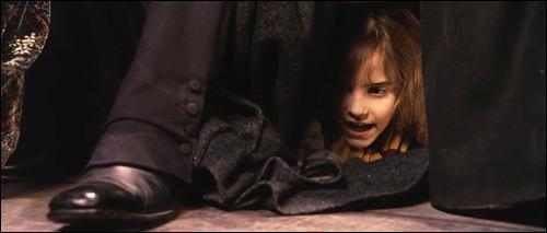 Un autre sort basé sur l'élément du feu, Lacarnum Inflamarae, permet d'enflammer un objet. Lors de quel film de la saga  Harry Potter  Hermione Granger utilise-t-elle ce sort sur la robe de Severus Rogue ?