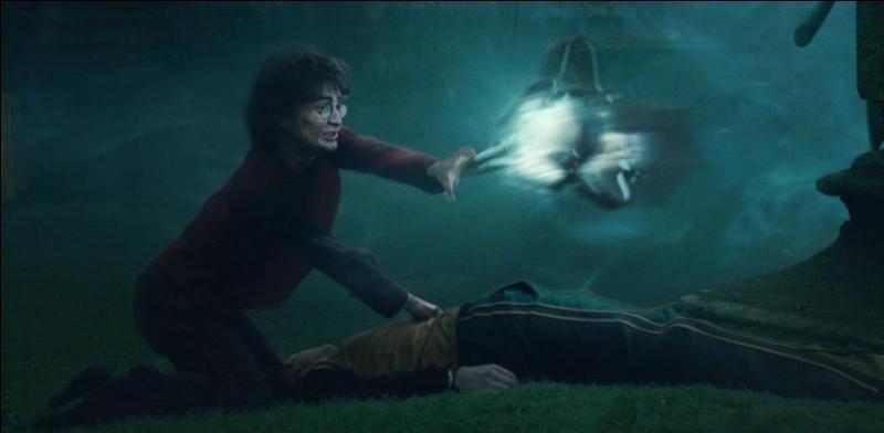 Regardez-bien l'image ci-contre. Nous sommes dans  Harry Potter et la Coupe de feu . Sur quel objet Harry Potter exerce-t-il le sortilège d'Attraction qui se manifeste par l'incantation Accio ?