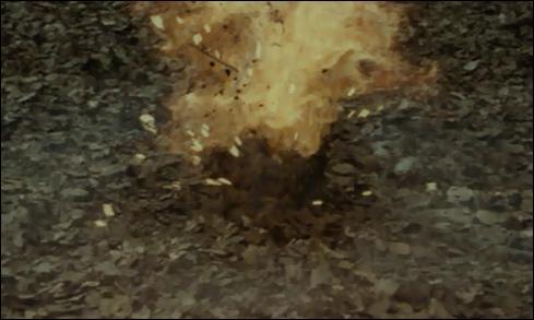 Le sortilège de Découpe a pour formule Diffindo ou plus rarement Cracbadabum. Dans quel unique film de la saga  Harry Potter  la formule Diffindo est-elle employée ?