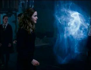 Le Sortilège du Patronus permet d'invoquer un gardien pour se protéger de forces obscures comme les Détraqueurs. Il prend la forme d'un animal suite à l'incantation magique Expecto Patronum (ou Spero Patronum dans les livres). Dans  Harry Potter et l'Ordre du Phénix , de quel animal prend la forme du Patronus de Hermione Granger ?