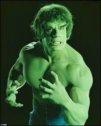 """Tout le monde sans exception se souvient de """"L'Incroyable Hulk"""" ; dans cette série le balaise tout vert était interprété par Lou Ferrigno. Mais savez-vous qui a été auditionné et recalé pour le rôle ?"""