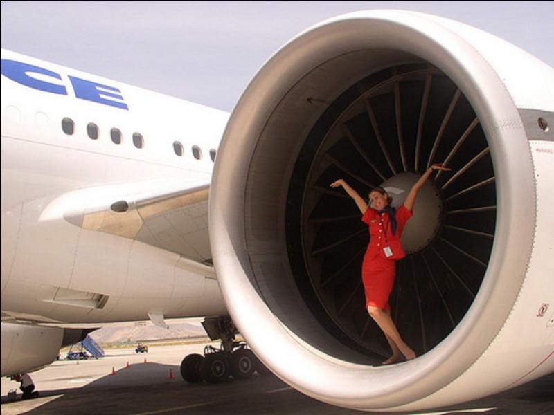 Lors de la préparation d'un vol (donc, avant le vol), un équipage d'une compagnie vietnamienne fut obligé d'arrêter en urgence la procédure de départ ! Pourtant, l'avion ne présentait aucun problème technique, aucune panne, aucun risque pour son équipage et ses passagers !