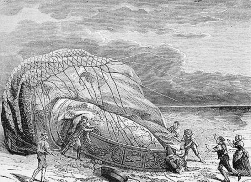 En oubliant la période mythologique, c'est le 1e accident de l'histoire de l'aéronautique. On ne connaît pas les raisons exactes de cet accident ! Ce fut, également, la 1e tentative de la traversée de la Manche (France vers Angleterre) ! Que s'est-il passé ?