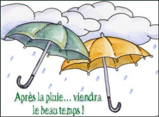 Quel verbe est de plus en plus utilisé abusivement pour signifier  c'est vrai , pour parler de tout et de rien, donc de  la pluie et du beau temps  ?