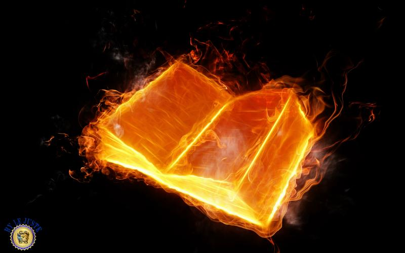 Qui a écrit  L'huile sur le feu  ?