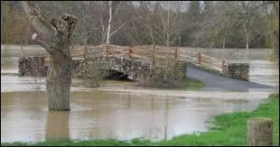 Il a ---------- plu que les rivières débordent.