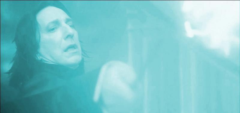 Dans  Harry Potter et le Prince de Sang-Mêlé , Severus Rogue tue Albus Dumbledore d'un Avada Kedavra. Quelle baguette magique, extrêmement puissante, était la propriété du directeur de Poudlard ?