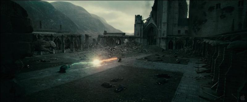 Enfin, dans  Harry Potter et les reliques de la mort (Partie II) , quelle est la raison de la fin de Celui-Dont-On-Ne-Doit-Pas-Prononcer-Le-Nom, qui lança une dernière fois un Avada Kedavra contre Harry Potter ?