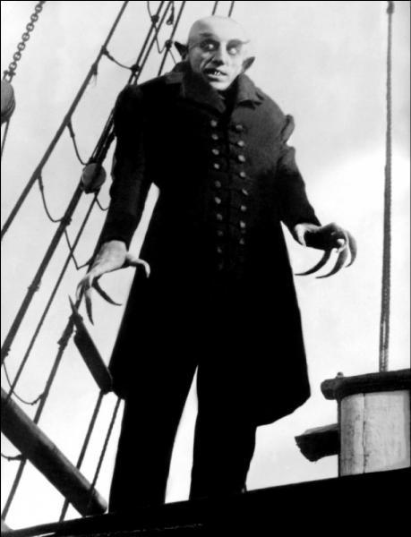 Friedrich Wilhelm Murnau avait adapté son film du roman  Dracula  de Bram Stocker, bien qu'il fut non autorisé par les ayants-droit. C'est pour cette raison que certains noms et détails ont été changés par rapport au roman. Le comte Dracula devient ainsi le comte :