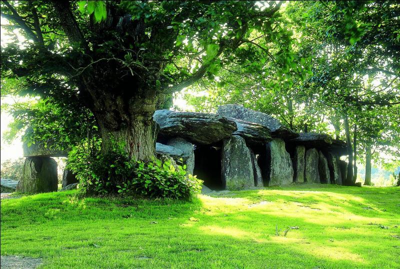 La Roche-aux-Fées est une allée couverte à Essé. Elle doit son nom à une légende qui raconte que des fées auraient apporté les pierres. Au Néolithique, les dolmens servaient...