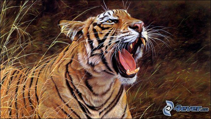 Le tigre aime l'eau et sait très bien nager :