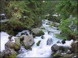 La rivière et le torrent, grossis par les fortes pluies, ----- la colline.