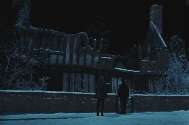 Suite à la formulation de la prophétie, Albus Dumbledore prévient James Potter et Lily Potter que le danger est à leurs portes. Le directeur de Poudlard leur garantit la protection grâce à un sortilège spécifique. Quel est le nom de ce sortilège ?