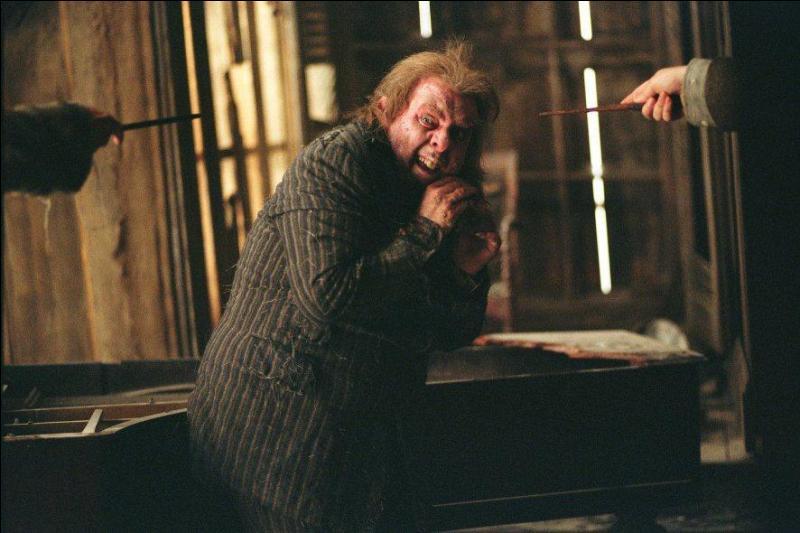 Tandis que Harry Potter est désormais en sécurité, Sirius Black traque Peter Pettigrow qui a trahi les parents du jeune sorcier. Rattrapé par le parrain de Harry Potter, comment Peter Pettigrow va-t-il faire croire à la culpabilité de Sirius Black ?