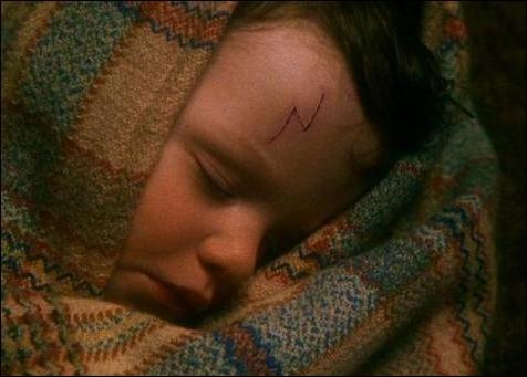 Au soir de la défaite de Lord Voldemort, quel est le surnom que tous les sorciers, soulagés par la fin de cette guerre meurtrière, donnèrent au jeune Harry Potter, alors seulement âgé d'un peu plus d'un an ?