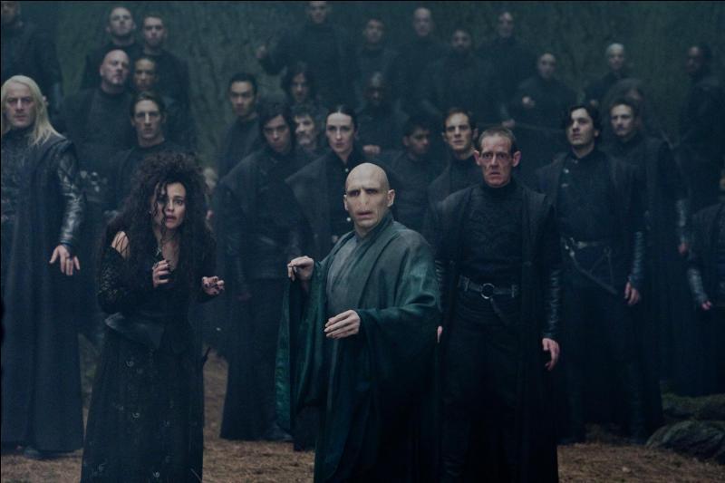 Nous arrivons alors dans les années 1970. Lord Voldemort est craint de toute la communauté magique. D'une soif de pouvoir rarement étanchée, le Seigneur des Ténèbres fédère autour de lui des fidèles appelés Mangemorts. Quelles étaient alors leurs véritables intentions ?