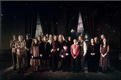 Face aux multiples rassemblements des forces des ténèbres opérés par Lord Voldemort, Albus Dumbledore décide de créer, au cours des années 1970, une organisation secrète qu'il nommera l'Ordre du Phénix. Quelles grandes lignées de sorciers reconnus donnent leur allégeance à l'Ordre du Phénix en se battant aux côtés du directeur de Poudlard ?