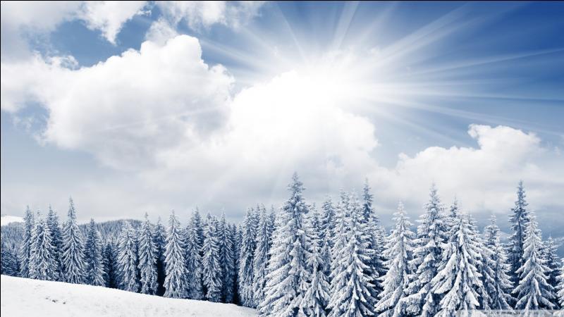En hiver, c'est une couleur qui revient régulièrement :