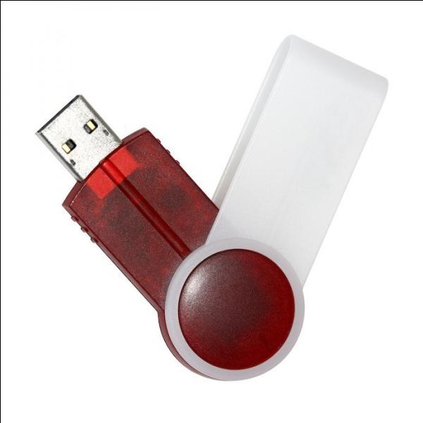 Voilà, j'ai trouvé : une clé USB ! Elle s'en servira dans son boulot comme à la maison, elle est très informatisée ces derniers temps, et puis, un cadeau utile c'est (... ) il est question et rien d'autre, pas de superflu !