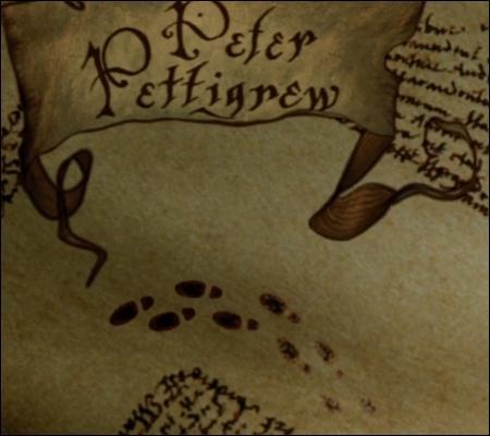 Des pieds indiquent que Peter Pettigrow marche dans ce couloir ; en l'occurrence, il aurait plutôt fallu représenter :