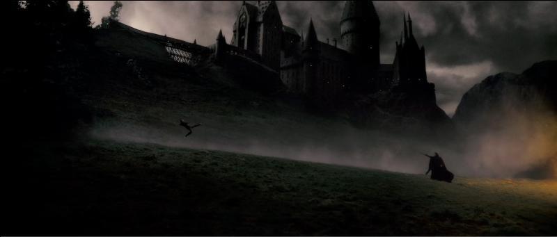 Les Mangemorts, Severus Rogue en tête, quittent alors précipitamment Poudlard. Harry Potter, à la fois choqué et complètement dérouté, poursuit le Prince de Sang-Mêlé dans les couloirs de l'école. Quel sortilège magique Harry Potter lance-t-il sur Severus Rogue avant que ce dernier ne le contre, mettant Harry Potter sur le reculoir ?