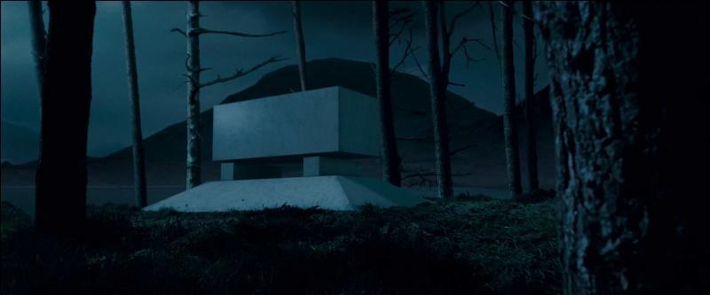 Début Juillet 1997, un dernier hommage est rendu à Albus Dumbledore. Des funérailles magiques sont célébrées en l'honneur du directeur de Poudlard, dans le parc de l'établissement, à proximité du lac. Albus Dumbledore est enterré sur une petite île, au milieu du lac, en présence de toutes les personnalités de la communauté magique. De quelle couleur sa tombe est-elle ?