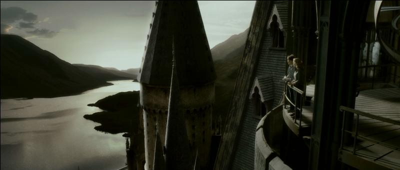 Enfin, toujours dans le film  Harry Potter et le Prince de Sang-Mêlé , le phénix d'Albus Dumbledore chanta une magnifique lamentation en l'honneur de son maître qui émut les sorciers présents lors des funérailles. Comment s'appelle ce phénix ?