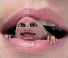 Il faut tourner --- fois la langue dans sa bouche avant de parler.