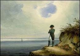 Sur quelle ile Napoléon Bonaparte a-t-il fini ses jours ?