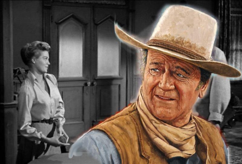 Un shérif solitaire d'une bourgade du Texas résiste avec courage, au nom de la loi, à un gang de desperados qui assiègent la ville...