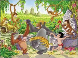 Quel est le titre de ce film d'animation où Mowgli a été adopté par une meute d'animaux sauvages ?
