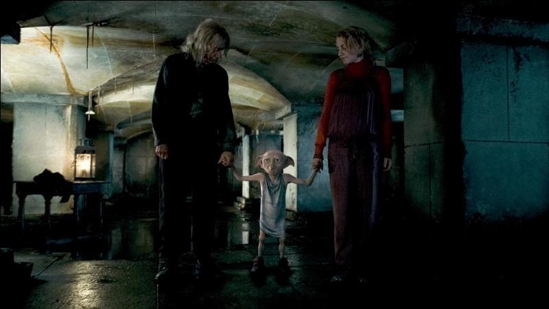 Au même moment, l'elfe de maison prénommé Dobby arrive immédiatement. Sur demande expresse de Harry Potter, dans quel lieu doit-il conduire les sorciers qui étaient déjà prisonniers avant que Harry Potter et Ron Weasley n'arrivent ?