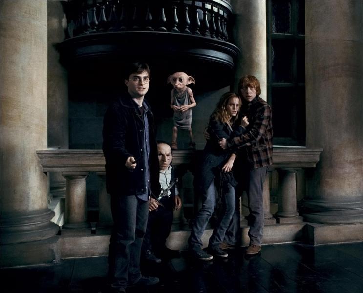 Alors que Harry Potter, Hermione Granger, Ron Weasley et Gripsec sont réunis, Dobby les rejoint pour fuir cet endroit. Comment Dobby va-t-il permettre à tout ce monde de partir du manoir des Malefoy et de revenir directement vers l'endroit indiqué tout à l'heure par Harry Potter ?
