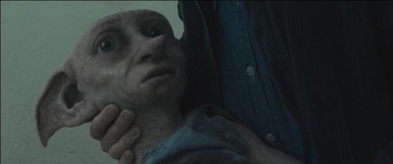 Alors qu'ils partent à toute vitesse du manoir des Malefoy, Bellatrix Lestrange lance un poignard en direction de Dobby, de Gripsec et de toute la troupe de sorciers. Qui succombera à ses blessures après avoir reçu le poignard dans la poitrine ?
