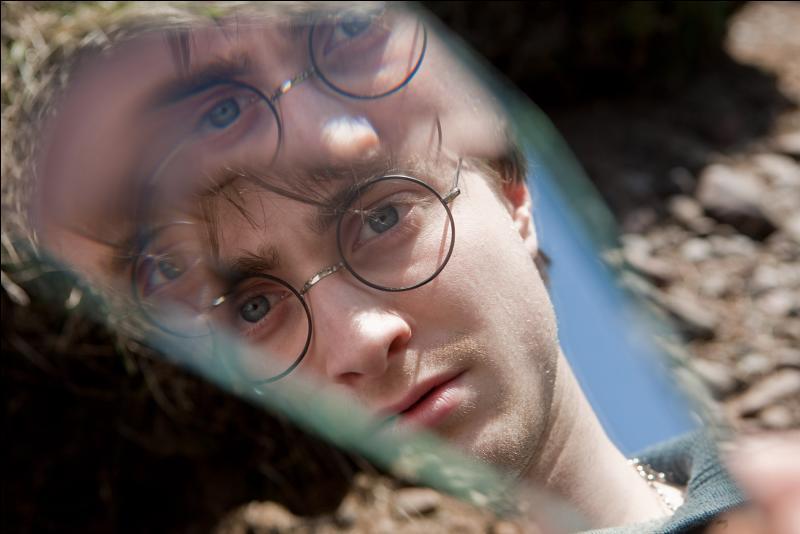 Le Miroir à Double Sens a joué un rôle décisif dans cette bataille puisqu'il a permis à Abelforth Dumbledore d'envoyer Dobby aider Harry Potter et ses amis. Ce miroir avait été donné à Harry Potter par Sirius Black. Quel lien unit les deux sorciers ?