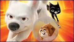 Comment s'appelle ce film ?