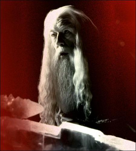 À quelle occasion Dumbledore déclare-t-il « qu'il existe des choses bien plus terribles que les blessures physiques » ?