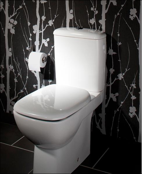 Moquette, tu exagères, qu'est-ce que les toilettes ont à voir avec ce noble animal ?