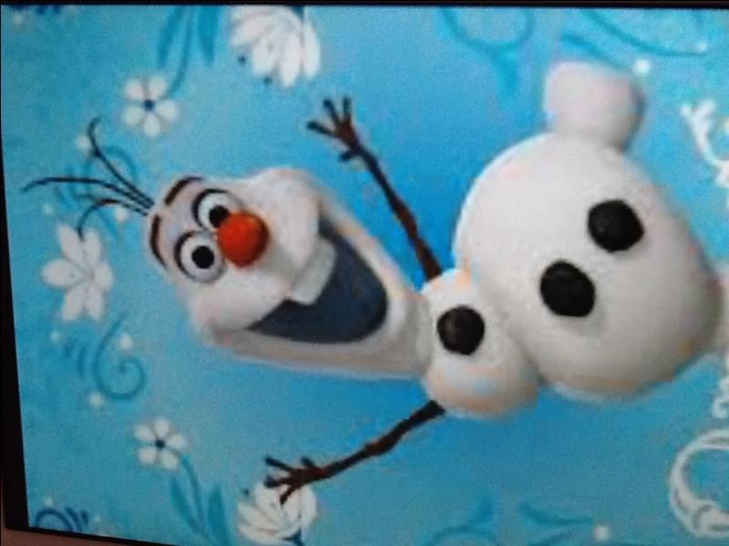 Comment s'appelle le bonhomme de neige ?