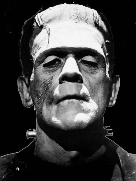 Mais qu'il a l'air triste le monstre créé par Frankenstein, d'abord parce que son créateur n'avait pas de formation de chirurgien esthétique, visiblement, mais plutôt de bricoleur, mais aussi et surtout parce que... ?