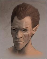 Quel est le nom elfique des Elfes des Bois ?