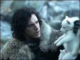 Comment s'appelle le loup de Jon Snow ?