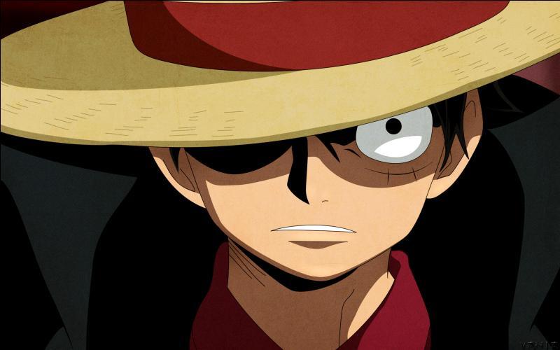 Comment s'appelle le fruit du démon que Luffy a mangé ?