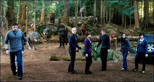 Pourquoi Bella ne devrait-elle pas s'inquiéter des combats entre loups et vampires ?