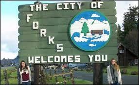 Quelle vision ramène Alice à Forks ?