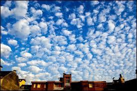Ce nuage est toujours de couleur blanche et de forme ronde. Il est toujours espacé et laisse passer le soleil. Il s'agit ...